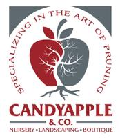 Candyapple & Co. logo